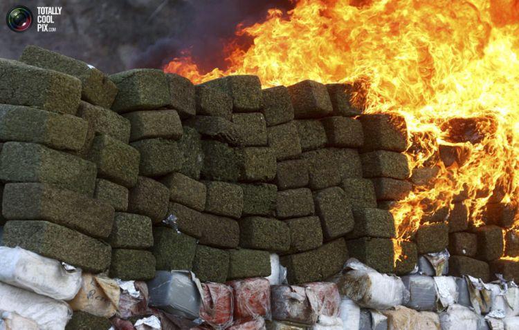Латиноамериканский нарковойны